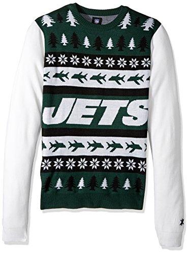 (FOCO NFL Wordmark Sweater, Herren, Team Color, Large)