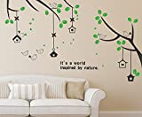 #8: Solimo Wall Sticker for Living Room (Branches & Bird Houses,  ideal size on wall: 160 cm x 70 cm)