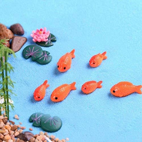 siti di incontri pesci stagno