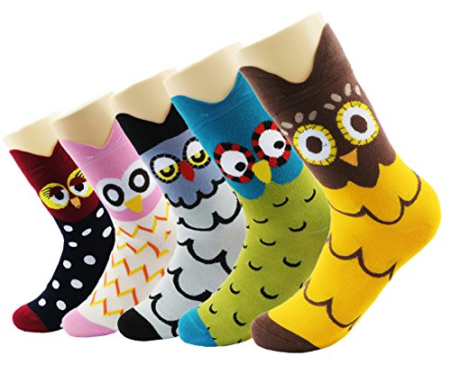 Calcetines de algodón Wacky Calcetines coloreados del tobillo de la historia del regalo de Navidad coloreado |Calcetines Trendy My Story (historia de búho)