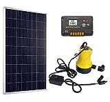 DCHOUSE kit Pompe à eau solaire W/100 W Poly Panneau solaire et 15 A solaire contrôleur pour arroser