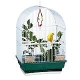 Relaxdays Gabbie per Uccelli, Piccola, Cocorite, Canarini, Posatoio, Mangiatoia, HLP 49,5 x 34,5 x 28 cm, Bianco/Verde, 50 x 34,50 x 28,00cm