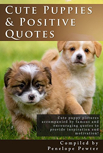 cute-puppies-and-positive-quotes-cute-puppy-photos-and-uplifting-quotes-for-inspiration-and-motivati