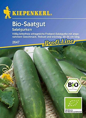 Gurkensamen – Salatgurke Sonja (Bio Saatgut) von Kiepenkerl