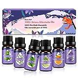 Aceites Esenciales, 100% Puros y Naturales Aromaterapia Aceites Esenciales para Humidificador (Lavanda, Hierba de Limón, Menta, Eucalipto, Árbol de té, Naranja dulce) 6 x 10 ml