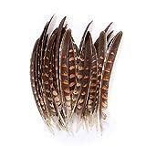 ERGEOB Hähnchen Federn 15-22cm 50 Stuck