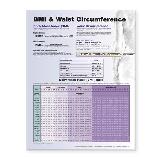 BMI and Waist Circumference