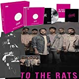 Songtexte von To the Rats and Wolves - Cheap Love