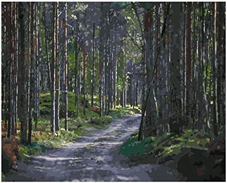 CADANIA Route DIY Peinture À À À l'huile Numérique Peinture par Numéro Toile Salle Home Decor No Frame B07K9TK6W8 660720