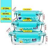 Glasbehälter Mit Deckel, 3er-Set, Mit Federschloss, Ohne BPA, Auslaufsicher, Mikrowelle, Backofen, Gefrierschrank