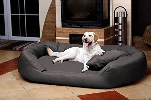 TIERLANDO® SV6-02 Orthopädisches Hundebett Sammy VISCO aus fest gewebtem Polyester Gr. XXXL 170 cm Graphit Grau