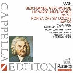 Geschwinde, ihr wirbelnden Winde, BWV 201: Aria: Mit Verlangen druck ich deine zarten Wangen (Bass)