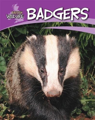Badgers (British Wildlife) por Sally Morgan