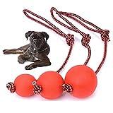 AGIA TEX Hunde-Spielzeug Hundeball mit und ohne Seil   Wurf-Ball, Schleuderball   Zerr- und Apportierspielzeug für große und kleine Hunde   Hundespielball aus robusten Naturkautschuk 1 Stück S Ball am Seil