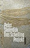 Das Schelling-Projekt: Bericht (suhrkamp taschenbuch) - Peter Sloterdijk