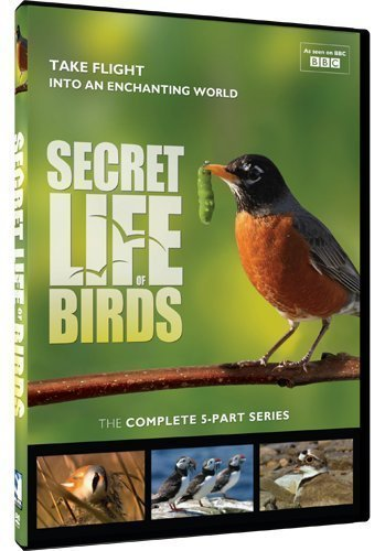Secret Life of Birds - 5 Part Series by Mill Creek Entertainment by Various (Secret Life Season 5)