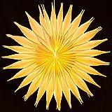 SIKORA FB50 beleuchteter großer XXL Papierstern Stern Leuchte Weihnachten D:60cm