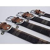 Unbranded Luxus Leder Hundehalsband (50-60 cm) (Tweed Karo)