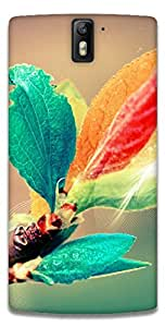 The Racoon Lean printed designer hard back mobile phone case cover for Oneplus One. (blooming b)
