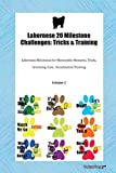 Labernese 20 Milestone Challenges: Tricks & Training Labernese Milestones for Memorable Moments, Tricks, Grooming, Care,  Socialization Training Volume 2