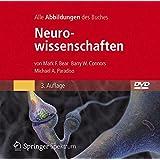 Bild-DVD, Neurowissenschaften: Die Abbildungen des Buches