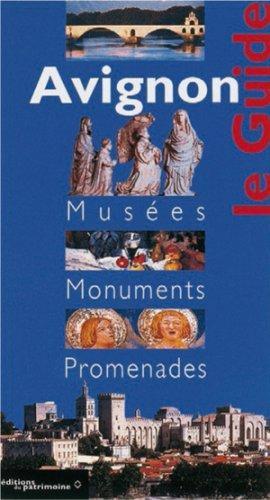 Avignon: Museums, Monuments, Excursions/Tours