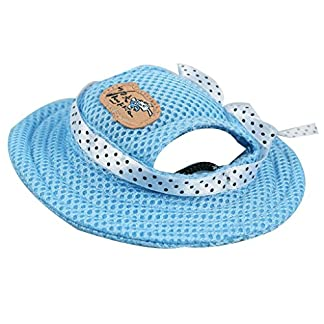 Kung Fu Dog Pet Princess Mesh Porous Sun Cap Hat with Ear Holes Only for Small Dogs 9