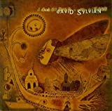 Best David Sylvian - Dead Bees on a Cake Review