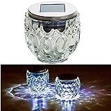 esto24® LED Solar Tischleuchte mit Lichtsensor Edelstahl Glas Solarleuchte Farbwechsel Oder Weißes Licht (Ø 9,0 cm und 10 cm Höhe)