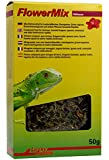 Lucky Reptile Flower Mix Hibiscus 50 g, 1er Pack (1 x 50 g)