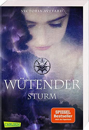 Wütender Sturm (Die Farben des Blutes 4) -