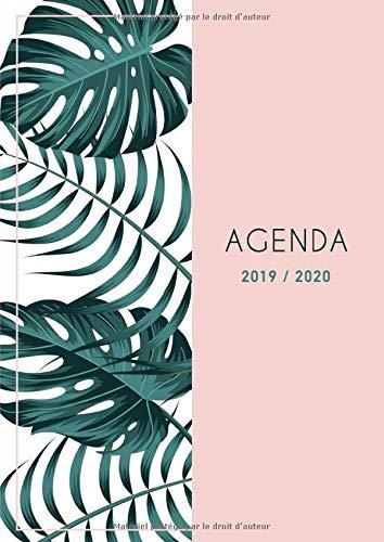 Agenda 2019 2020: Grand Agenda 2019 2020 Professionnel - Motif feuille de palmier rose -Grand Format Din A4 - vertical - 18 Mois Agenda Juillet 2019 à Décembre 2020 par Papeterie Collectif