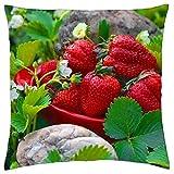 Yummy Erdbeeren–Überwurf Kissenbezug Fall (40,6x 40,6cm)