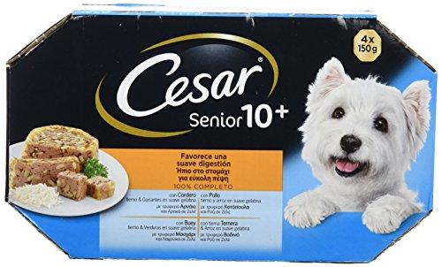Multipack 4 tarrinas 150g perros senior +10 años