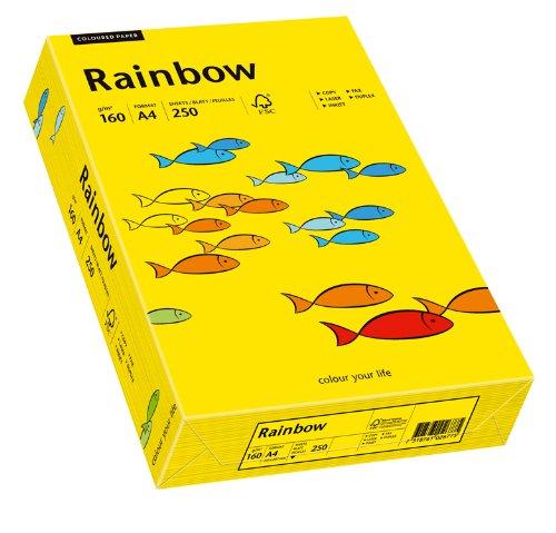 Papyrus 88042395 Drucker-/Kopierpapier farbig, Bastelpapier: Rainbow 160 g/m², A4, 250 Blatt, matt, intensivgelb