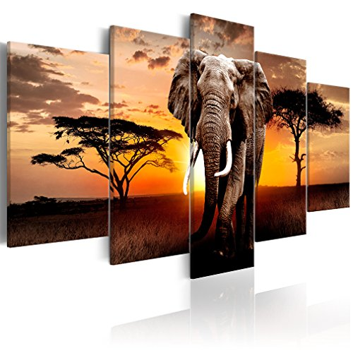 decomonkey Bilder Afrika Tiere 100x50 cm 5 TLG. Leinwandbilder Bild auf Leinwand Vlies Wandbild Kunstdruck Wanddeko Wand Wohnzimmer Wanddekoration Deko Elefant Landschaft Sonnenuntergang
