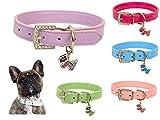 Lushpetz Original Design Hundehalsband aus Leder mit freiem, graduiertem Hundeanhänger XSmall Small Medium Große Größen (Klein, Lila)