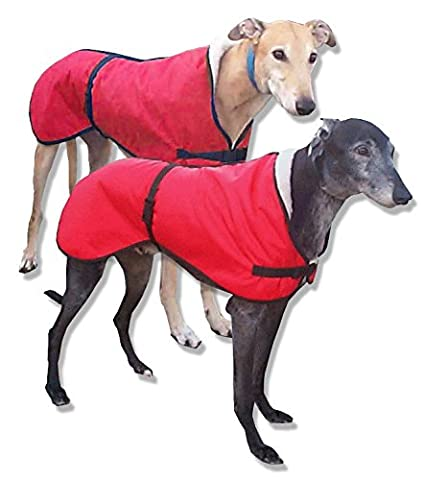 Greyhound Walking Out Dog Coat. Water-resistant red microfiber and with a cream sherpa acrylic fleece lining (Medium 28-30