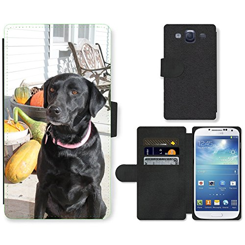 Grand Phone Cases PU Leder Leather Flip CASE Cover HÜLLE ETUI Tasche Schale // M00142163 Hunde Fall-Herbst-Haustiertier, Welpe // Samsung Galaxy S3 S III SIII i9300 (S3 Fall Samsung Welpe Galaxy)