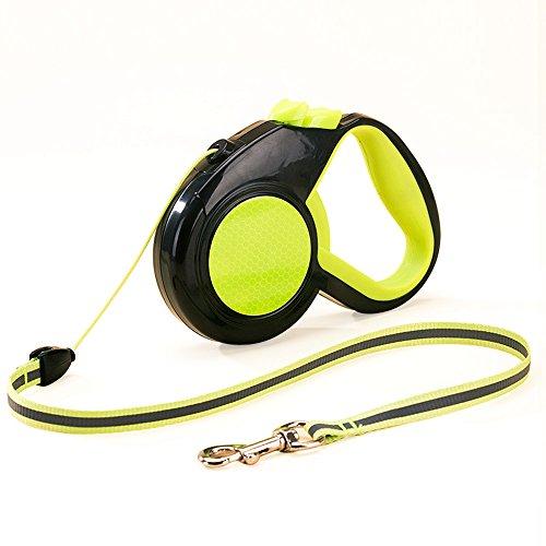 ne, Hundeleine einziehbar Hund Walking Training Leine Nylon mit Hand Grip & Break und Verriegelung geeignet für kleine mittelgroße und große Hunde bis kg (Sprengen Hund)