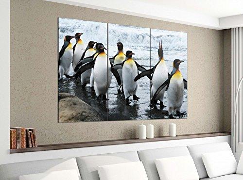 Acrylglasbilder 3 Teilig 120x100cm Pinguine Meer Pinguin Tiere Druck Acrylbild Acrylglas Acrylbilder Wand Bild 14E1428, Acrylgröße 8:gesamt 120x100cm