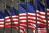 David Barnes / DanitaDelimont – US Flags in Rockefeller Plaza New York Photo Print (67,01 x 44,50 cm)