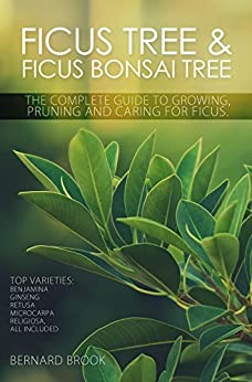 Ficus Tree and Ficus Bonsai Tree. The Complete Guide to Growing, Pruning and Caring for Ficus. Top Varieties: Benjamina, Ginseng, Retusa, Microcarpa, Religiosa all included. di [Brook, Bernard]
