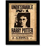 Harry Potter Undesirable No.1 Sign