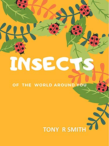 Insects Of the World Around You (English Edition)