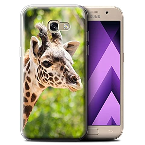 Coque Gel TPU de STUFF4 / Coque pour Samsung Galaxy A5 (2017) / Girafe Design / Animaux sauvages Collection