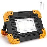 Coquimbo LED Portatile, 20W 750LM LED Lampada da Lavoro Ricaricabile Impermeabile, 4 Modalità Regolabili Luce da Campeggio for Riparazione, Escursionismo etc(Batteria al litio integrata)