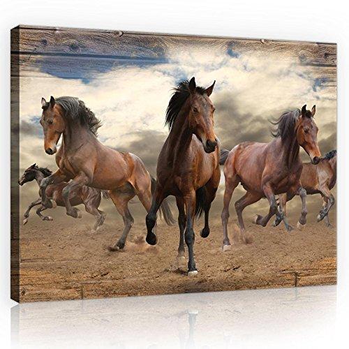 DekoShop Leinwandbild Wandbild Kunstdruck Pferde im Galopp auf Holzplanken AMDPP10083O1 O1 (100cm. x 75cm.)
