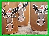 Adventskalender DIY Elch Set braun 24 Geschenktüten zum befüllen basteln