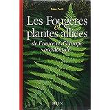 Fougères et plantes alliées d'Europe occidentale